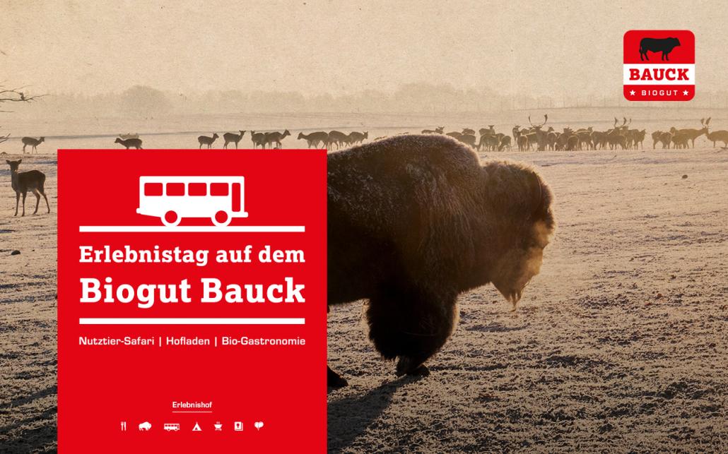 2017_03_03_Bauck_Facebook_Busreisen_WEB